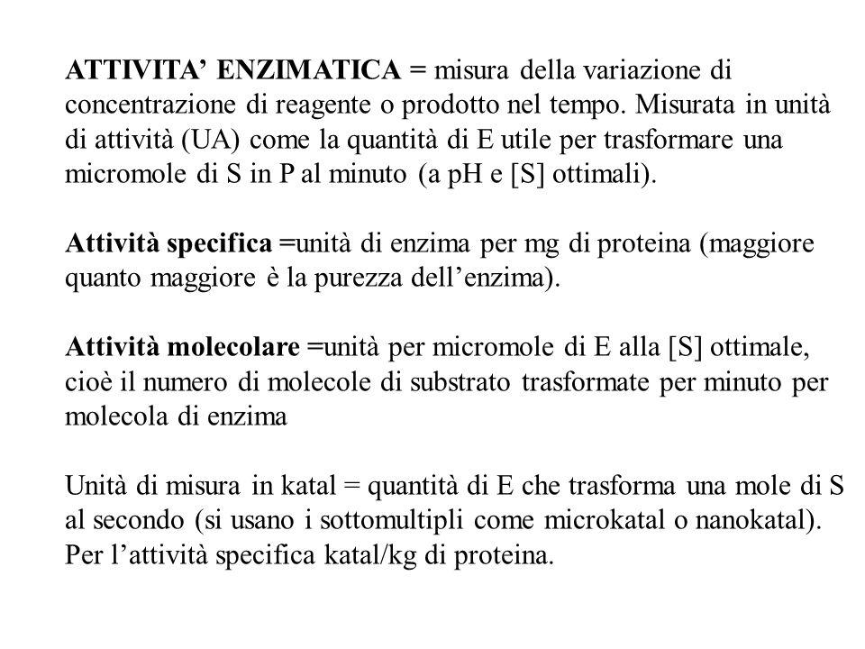 ATTIVITA' ENZIMATICA = misura della variazione di concentrazione di reagente o prodotto nel tempo. Misurata in unità di attività (UA) come la quantità di E utile per trasformare una micromole di S in P al minuto (a pH e [S] ottimali).